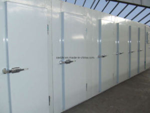 Meat and Fish Cold Storage (KRL500SM)