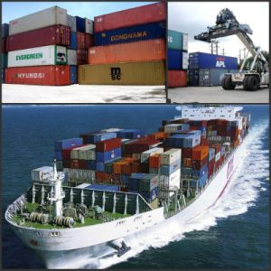 Sea Freight / Ocean Freight / Shipping Service To Dar Es Salaam / Tanzania pictures & photos