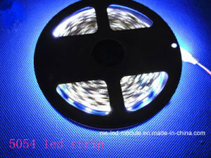 5054 Single Color 60LED/M LED Strip Light pictures & photos