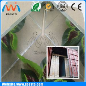 3mm 4mm 5mm 6mm 8mm Colored Aluminum Mirror Glass Sheet
