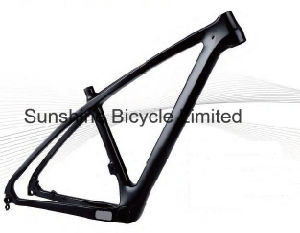 Carbon 29er Hardtail Frame W/Side Swing