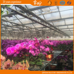 Auto environment Control Glass Greenhouse for Planting Flower pictures & photos