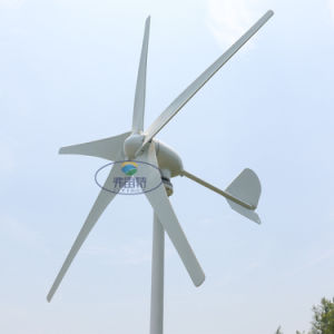 400W Wind Turbine Generator with 5 Blades 12V 24V 48V with Regulator