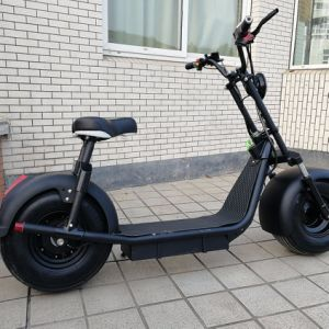 Lithium Electrical Motorcycle 1000W Fat Tire Harley EEC Certificated pictures & photos