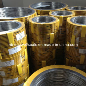 Spiral Wound Gaskets Ss304fg/Outer Ring Coating with Electrostatic Sprayng pictures & photos
