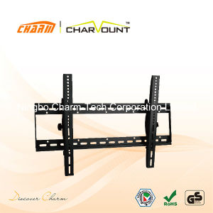 Universal Slim Heavy Duty Tilt TV Wall Bracket Mount (CT-PLB-201) pictures & photos