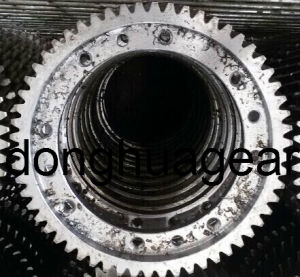 Brass Worm and Nylon Worm Gear