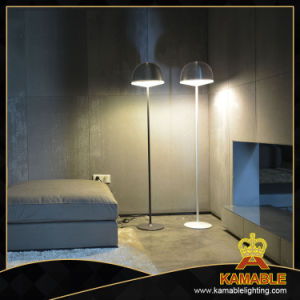Decorative Rest Room Modern Floor Lamps (2259F) pictures & photos