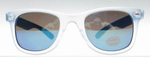 Custom Logo Ce FDA Colorful Plastic Classic Ray Sunglasses pictures & photos