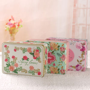 Hinged Square Metal Tin Box Manufacturer pictures & photos