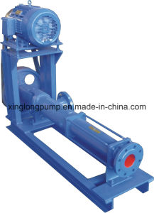 Xinglong Single Screw Pump pictures & photos