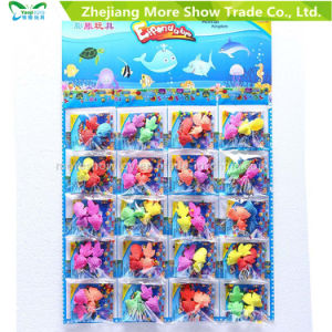 Colorful Crystal Soil with Growing Fish Water Growing Toys pictures & photos