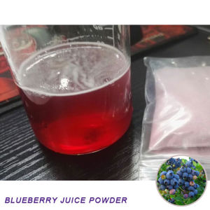 Natural Bilberry Blueberry Juice Powder