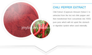 100% Natural Food Colorant Red Pepper Extract 1% Capsaicin pictures & photos