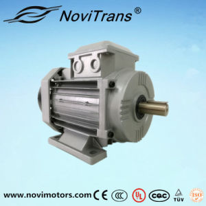 Overload Self-Protection Permanent-Magnet Motor 750W, Ie4, 1500rpm pictures & photos