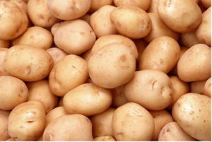 2013 New Crop Potato