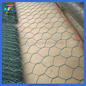 Heavy Galvanized PVC Coated Gabion Wire Mesh pictures & photos