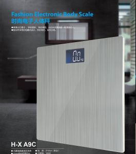 Steel Scale
