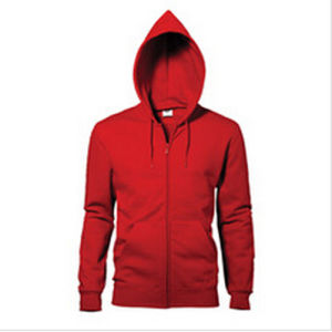 Custom Nice Cotton/Polyester Plain Hoodies Sweatshirt of Fleece Terry (F048) pictures & photos