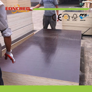 Film Faced Plywood / Marine Plywood / Shuttering Plywood /Construction Waterproof Plywood