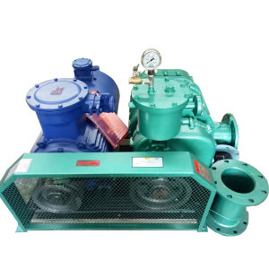 98kpa High Pressure Biogas Roots Blower
