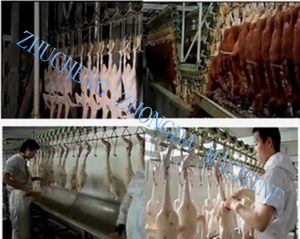 Duck Slaughter Machine Production Line pictures & photos
