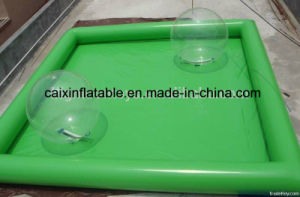 Adult Giant Inflatable Water Walking Ball Swimming Pool, Inflatable Pool Rental pictures & photos