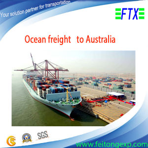 Ocean Freight From Guangzhou to Melbourne /Adelaide/Fremantle / Perth Australia