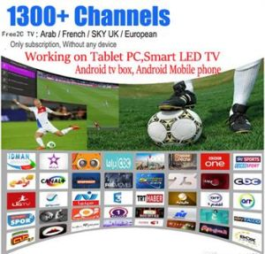 China Sky Tr UK De Arabic French1300+ Channels Streaming