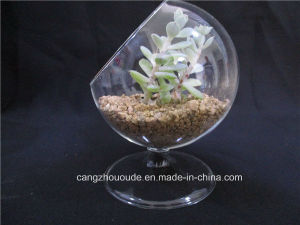 Art Transparent Mini Household Decorative Glass Vase