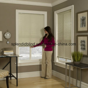 Aluminum Windows Mini Blinds Office Windows Blinds pictures & photos