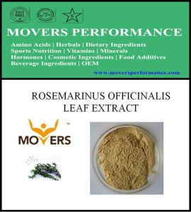 Hot Slaes Cosmetic Ingredient: Rosmarinus Officinalis Leaf Extract pictures & photos