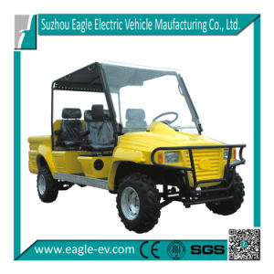 Electric UTV, CE, Cheap, Factory Supply, New Condition Eg6042A pictures & photos