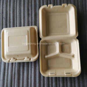 Biodegradable Foaming PLA Moulded Corn Starch Food Container