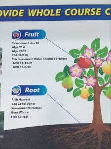 Drip Irrigation Fertilizer pictures & photos