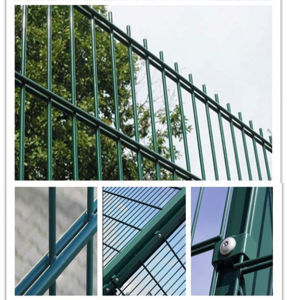 PVC Coating Double Fencing for House/Road/Playground/Garden/Building/Constuction pictures & photos