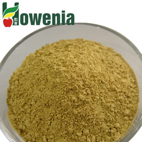 Natural Healthy Green Tea Powder