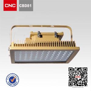 CNC Industrial Light Halogen Light Explosion Proof Light (CBD81)