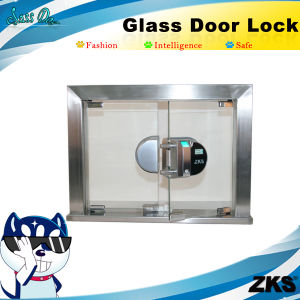 Zks-Gw1 Professional OEM Biometric Glass Door Access Control