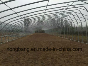 Multi-Span Arch Agricultural PC Film Greenhouse pictures & photos