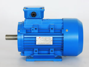 YE2 three phase  Electro-Magnetic Speed-Governing asynchronous motor pictures & photos