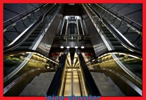 Moving Sidewalk Passenger Escalator pictures & photos
