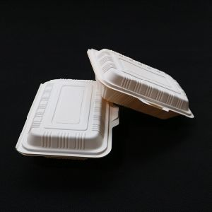 China Biodegradable Food ContainerDisposable Takeaway Lunch Box