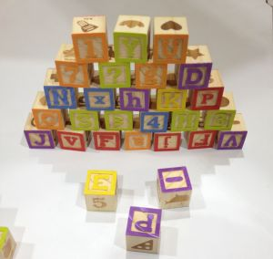 Hot Christmas Gift 50PCS Impact Print Wooden Blocks Toy pictures & photos