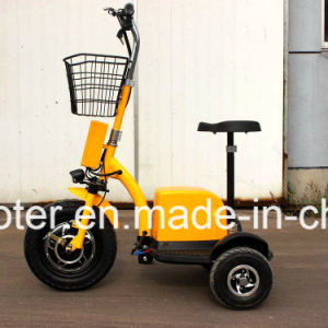 Ce Certificated 3 Wheels Electric Zappy Mobility Sightseeing Vehicle 500W pictures & photos