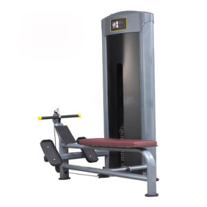Exercise Machines Fitness Machine pictures & photos