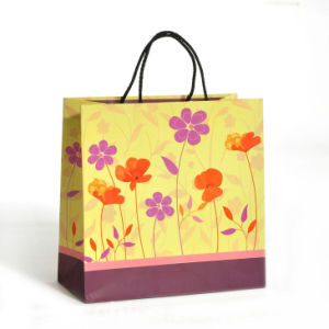 china lovely printing design paper packing handle gift shopping bag