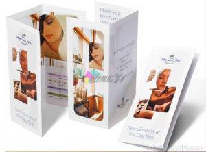 Quality Tri Fold Brochure Full Color Printing