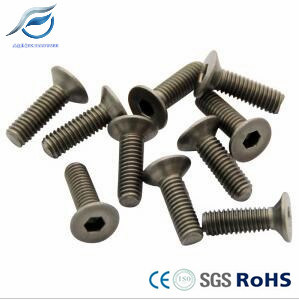 High Quality Titanium Flat Head Hex Socket Screw