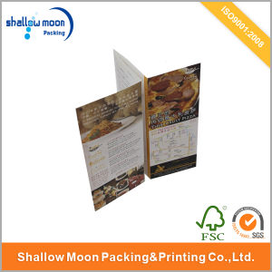 Customized Eco-Friendly Paper Brochure Printing (QYCI15160)